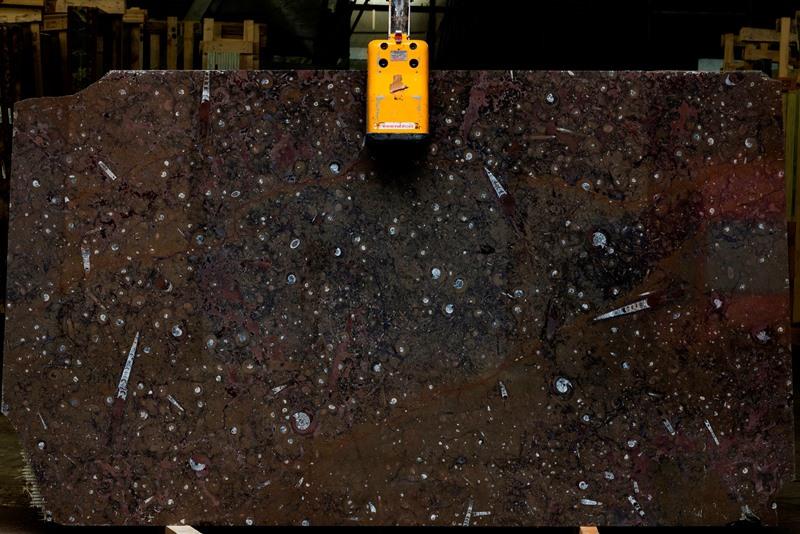 Мрамор Фоссил Браун (Marble Fossil Brown)