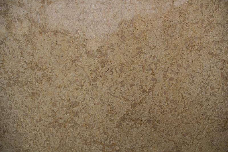Мрамор Гала Крем (Gala Cream Marble) fossil
