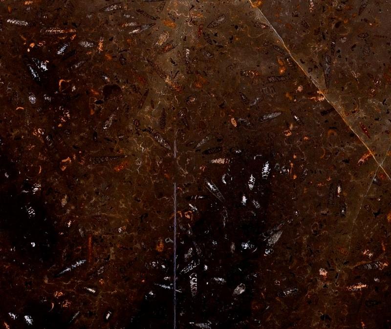 Мрамор Юрасик Браун (Marble Jurassic Brown)